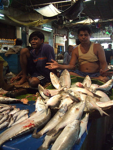 Bhetki: Fish