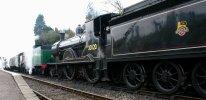 2013 Great Spring Steam Gala - Watercress Line - Medstead & Four Marks - T9 class - 30120 & Schools V - 925 Cheltenham