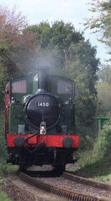 2014 Autumn Steam Gala Watercress Line - Leaving Ropley - Ex-GWR 14xx Class 1450 and Autocoach W238W