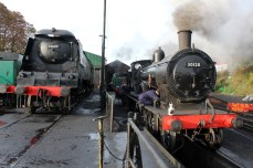 Watercress Line Autumn Steam Gala 24 October 2015 - West Country class 34007 Wadebridge and Ex-LSWR T9 class 30120