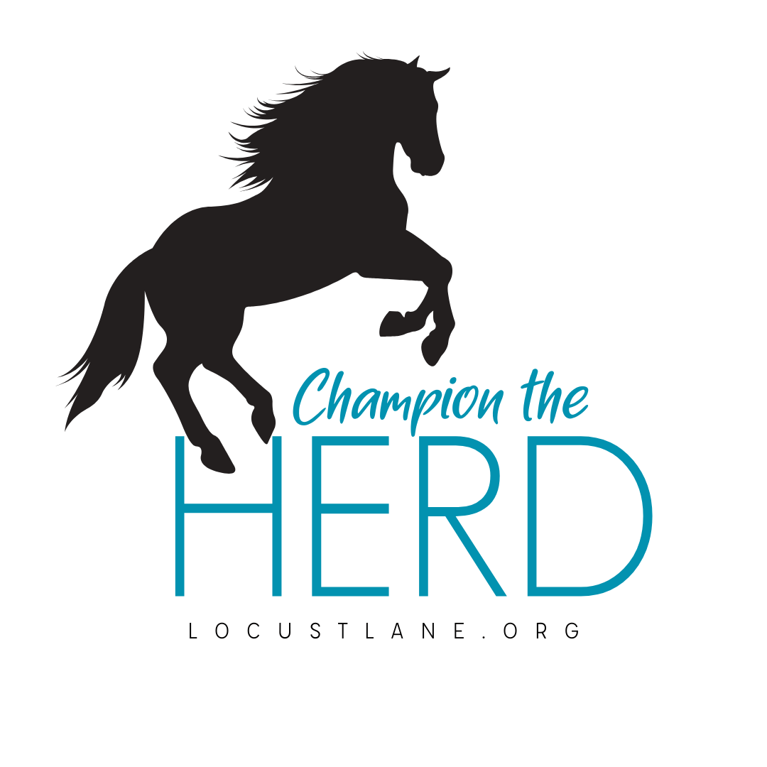 Champion the Herd