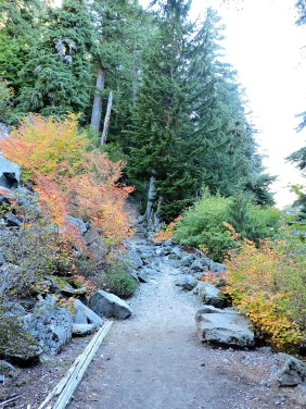 A taste of fall on the Carter/Madcap Falls Trail