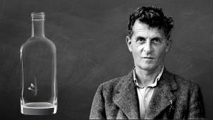 Wittgenstein - vliegenval