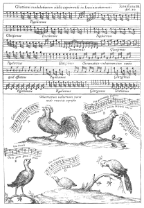 Kircher Musurgia Birds