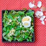 Feldsalat in drei Varianten