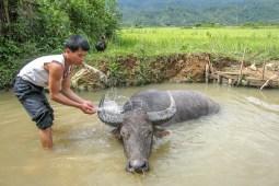 Photographe - Immersion - Un an au Vietnam