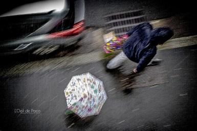 Photo #1 – Sunday rainy sunday