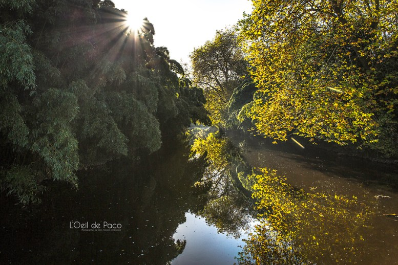 Photo #14 – Rayons d'Automne