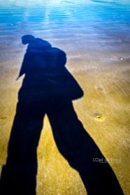 Photo #129 - Géant des sables