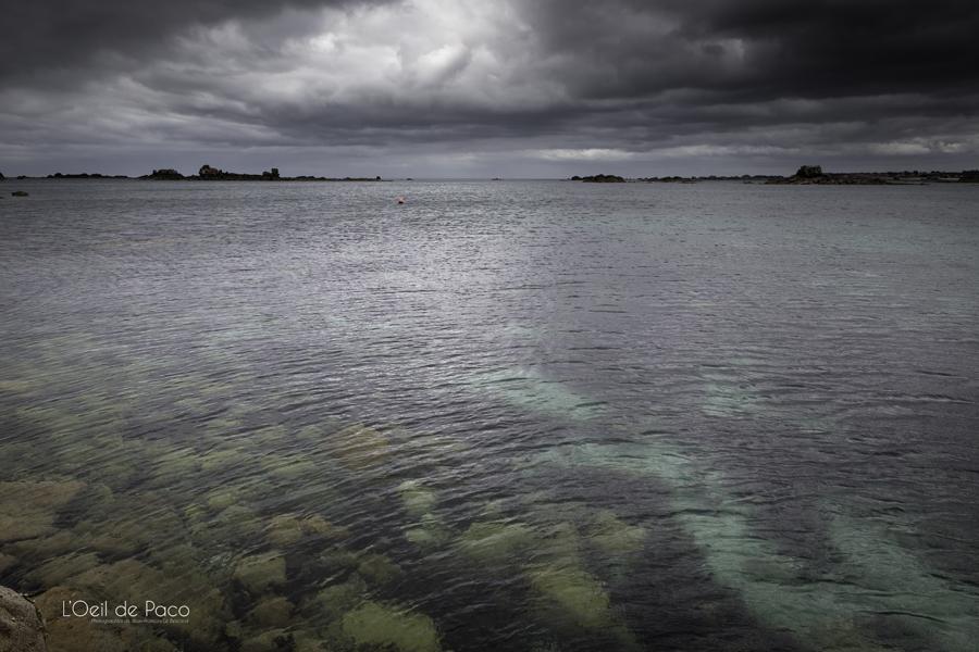 Photo #161 - Piège en haute Mer