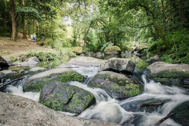 Photo #202 – Au milieu coule une rivière