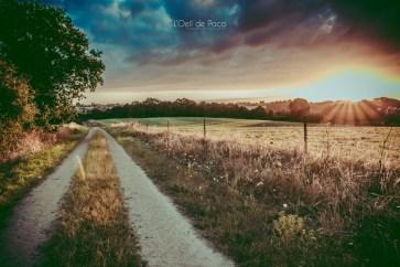 Photo #219 – Un chemin de campagne