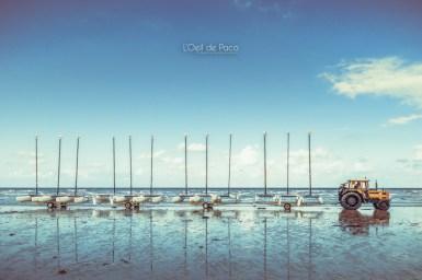 Photo #274 - Bel horizon
