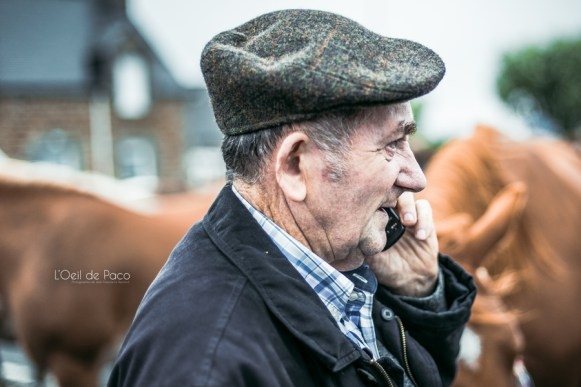 L'Oeil de Paco - Foire aux Poulains - Plaintel - 2015 (35)