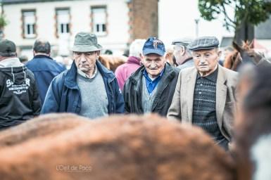 L'Oeil de Paco - Foire aux Poulains - Plaintel - 2015 (38)