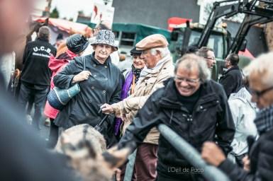 L'Oeil de Paco - Foire aux Poulains - Plaintel - 2015 (59)