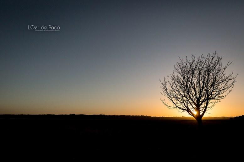 Photo #324 – Good morning Bretagne