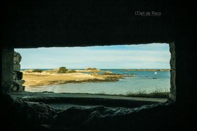 Photo #327 - Écran panoramique