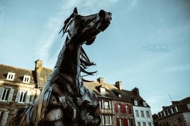 Photo #358 – Le cheval noir