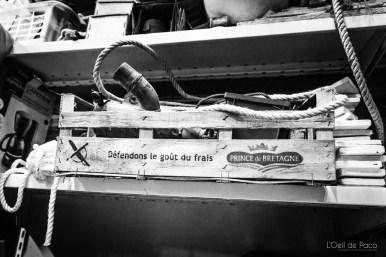 L'Oeil de Paco - Trampoline - Plougrescant (26)