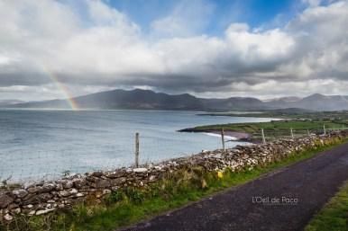 L'Oeil de Paco - Peninsule de Dingle - Irlande (103)