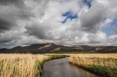 L'Oeil de Paco - Peninsule de Dingle - Irlande (129)