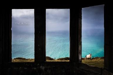 L'Oeil de Paco - Peninsule de Dingle - Irlande (160)