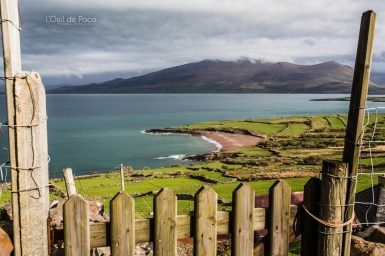 L'Oeil de Paco - Peninsule de Dingle - Irlande (172)
