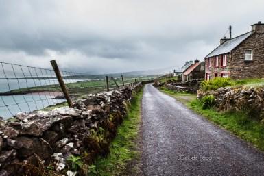 L'Oeil de Paco - Peninsule de Dingle - Irlande (28)