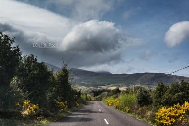 L'Oeil de Paco - Peninsule de Dingle - Irlande (55)