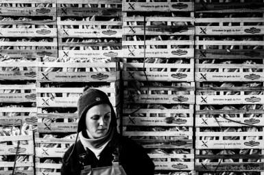 L'Oeil de paco - Aline - Agricultrice - Plougrescant (74)