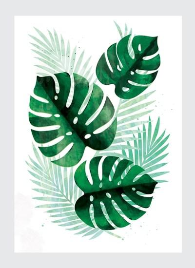 Plakat Tropikalne Liście Monstera