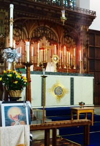 An hour of prayer was held before the Blessed Sacrament at Holy Hour in Saint Leonard's Church Loftus on  Monday 9th May 2016