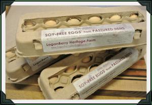 soy free eggs