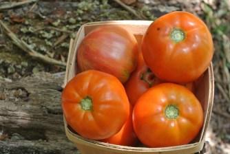 2 # tomatoes