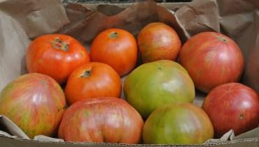 5# tomatoes