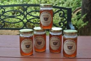 Garlic Jelly copy