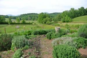 Scenery around the Farm