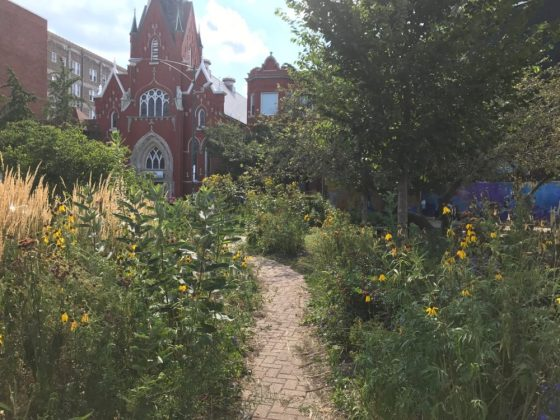Stop and Smell the Roses in These 5 Logan Square Community Gardens