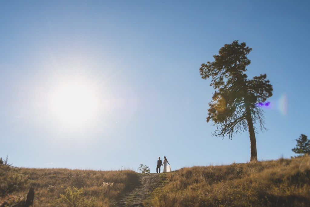 summerhill-kelowna-wedding-photography_ls8677