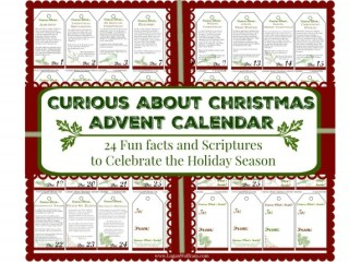 Curious About Christmas Advent Calendar