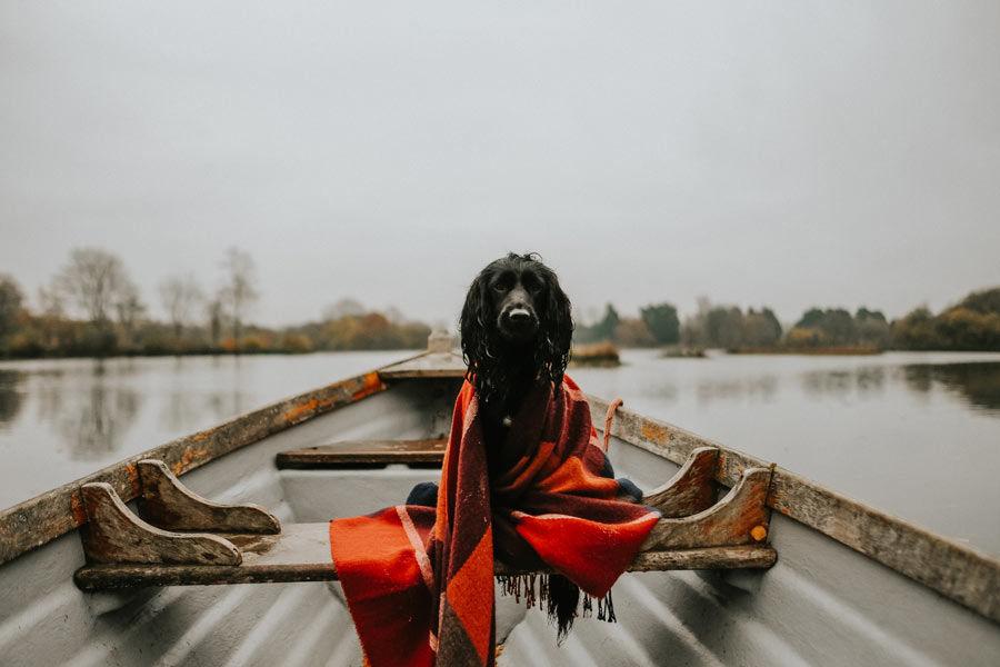 Pet-friendly-lakeside-holiday