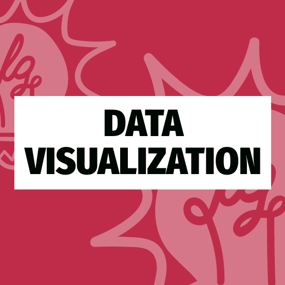 Data Visualization Portfolio