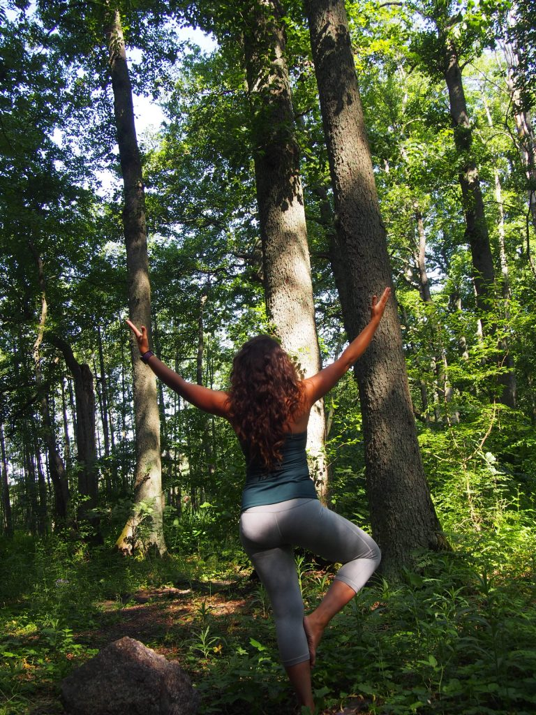 tree pose, forest, yoga, types of yoga