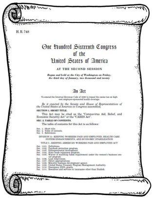 The Coronavirus Aid, Relief, and Economic Security Act