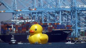 Hey Rubber Ducky (photo by Bob Chamberlin / Los Angeles Times)