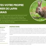 Recette à base de fumier de lapin