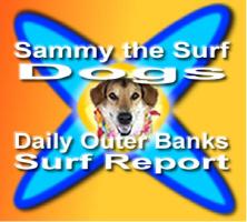 Sammy Gear Logo
