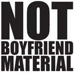 Big Bang Theory - not Boyfriend Material