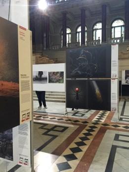 World Press Photo Kiállítás 2015